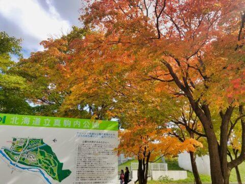 【紅葉スポット】札幌でゆったり撮影するなら真駒内公園がオススメ!
